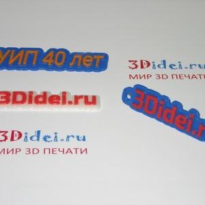 Брелок для ключей с надписью или логотипом (двухцветный)